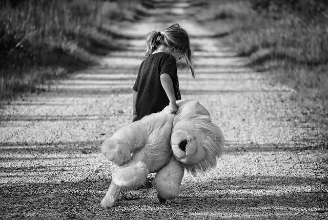 dieťa medveď cesta.jpg