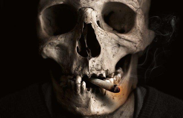 Lebka so zapálenou cigaretou v ústach.jpg