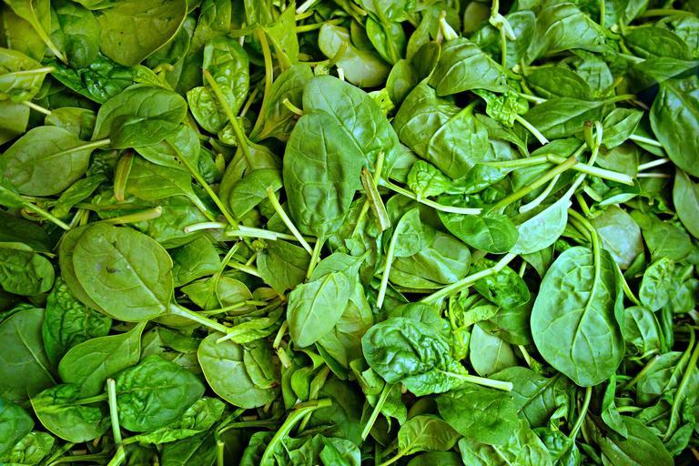 Listy zeleného špenátu.jpg